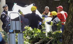 ต้นไม้ยักษ์ล้มทับนักแสวงบุญที่โปรตุเกส ดับแล้ว 11 ศพ