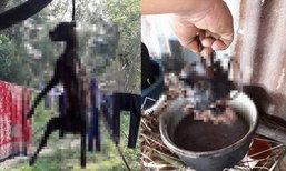 ชาวบ้านแตกตื่น จับหมาดำแขวนคอตัดหัวต้มกิน ในแคมป์คนงานเขมร