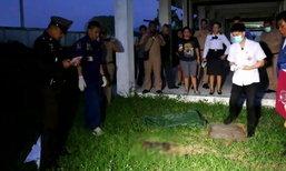 เวทนา สุนัขคุ้ยดินแทะศพทารก คาดแม่ใจร้ายฝังทำลายหลักฐาน