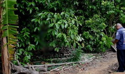 หนุ่มน้อยใจตายใต้ต้นมังคุด เพราะแม่ไม่ให้เงินไปเขาคิชฌกูฏ