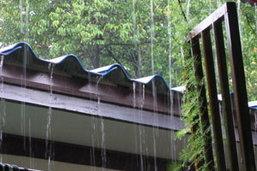 ม.เกษตรฯพิสูจน์ฝนกรด