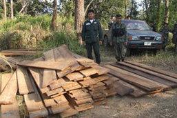 บุกยึดไม้สักแปรรูป-ไม้สักท่อนที่ถูกลักลอบตัดในป่าสงวน