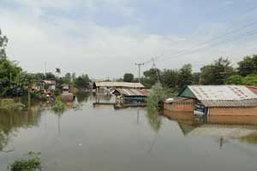 น้ำชีท่วมหนัก หลังพนังกั้นน้ำหมู่บ้านพังทลาย