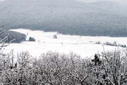 อากาศวิปริต! หิมะถล่มตอนใต้ของสหรัฐ
