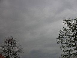 อุตุฯ แจ้งปีนี้อากาศแปรปรวนสูง คาด17เม.ย.ร้อนสุดของปี