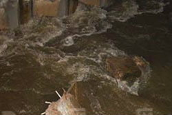ผู้ว่าฯ ปทุมธานี เริ่มไม่มั่นใจคุมน้ำได้