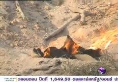 ตรวจสอบไฟคุใต้ดินที่พิษณุโลก พบมีก๊าซกว่าร้อยชนิด