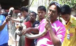 """ชาวบ้านแห่ดู """"โกขิก"""" โชว์จับมือเปล่า งูจงอาง 4 เมตร"""
