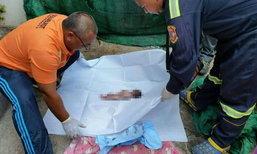สลดใจ พบศพทารกยัดกล่องรองเท้า ทิ้งถังขยะกลางมหาวิทยาลัยดัง