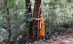 พระนักอนุรักษ์ครวญ ช่วยปลูกป่า กลับถูกกล่าวหาว่าบุกรุก