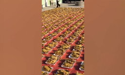ชาวไร่สัปปะรดศรีราชา แก้บนไก่ 1,000 ตัว หลังได้กำไรมหาศาล
