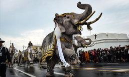 ภาพประวัติศาสตร์ ช้างมงคล 11 เชือก ถวายอาลัยในหลวง รัชกาลที่ 9
