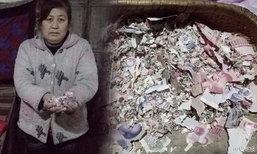 ป้าชาวจีนช้ำใจหนัก เงินเก็บแสนกว่าบาทในถังข้าวสาร ถูกหนูแทะจนไม่เหลือชิ้นดี