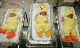 น่ารักจริงๆ ทารกสวมชุดกุ๊กไก่และลูกเจี๊ยบ ต้อนรับปีระกา