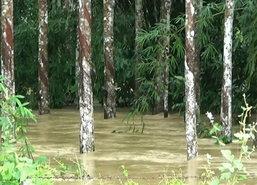 น้ำท่วมตรัง6อ.อ่วมกระทบ3หมื่นคนอ.เมืองวิกฤติน้ำ2ม.
