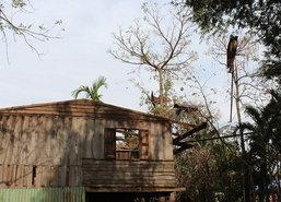 ชาวโคราชเร่งซ่อมบ้านถูกพายุถล่มกว่า130หลัง