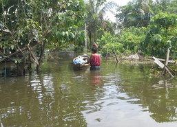 สงขลาหลายหมู่บ้านริมทะเลสาบยังท่วมหนักชาวบ้านลำบาก
