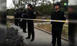 ชายจีนแอบปีนรั้วเข้าสวนสัตว์ ถูกเสือขย้ำตาย เจ้าหน้าที่ยิงเสือตาย