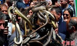 ยั้วเยี้ย! งานฉลองเทศกาลงูที่อิตาลี