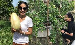 """ความสุขที่แท้จริง """"กบ ปภัสรา"""" ปลูกพืชผัก ชีวิตง่ายๆ ที่บ้านสวน"""