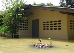 น้ำท่วมสตูล4อ.หลายหมู่บ้านอ่วม-จนท.เร่งย้ายเต่าบกหนี