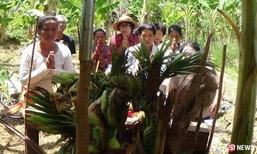 ได้ยินเสียงใบ้เลข รุ่งขึ้นพบต้นมะพร้าวแตกกิ่งคล้ายพญานาค