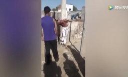 ชายอินเดียพยายามข่มขืนเด็กหญิง ชาวบ้านจับมัดเสา-เฆี่ยนไม่ยั้ง