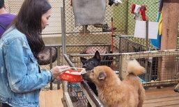 ภาพซึ้ง เบนซ์ ปุณยาพร ป้อนอาหารน้องหมาให้อิ่มท้อง