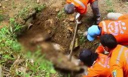 ฆ่าฝังดินโหด ลูกตามหาพ่อหายตัว 2 วัน ก่อนพบเป็นศพ คาดฝีมือลูกจ้างพม่า