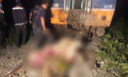 รถไฟพุ่งชนฝูงควายปากน้ำโพ ล้มตายระเนระนาด 21 ตัว