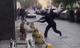 ชาวเน็ตจีนรุมประณามตำรวจ ตีสุนัขจนตายทั้งที่ถูกล่ามอยู่