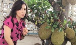 ตะลึงอีกครั้งขนุนบ้าน กวาง กมลชนก ปีนี้ลูกดกมากต้นเดียวร้อยกว่าลูก