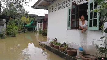 ชาวนครศรีฯ คาใจ! น้ำท่วมเมืองแต่ประตูน้ำปิดตาย-วัชพืชเพียบ ไร้การระบาย