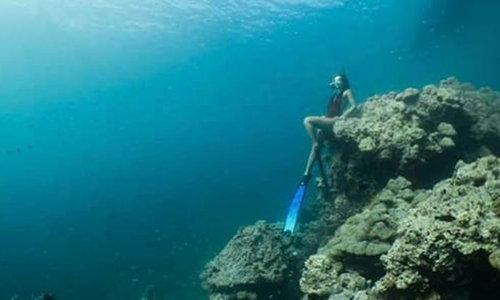 เจอตัวทันควัน สาวนั่งถ่ายรูปปะการังหมู่เกาะสุรินทร์ ยันรู้เท่าไม่ถึงการณ์