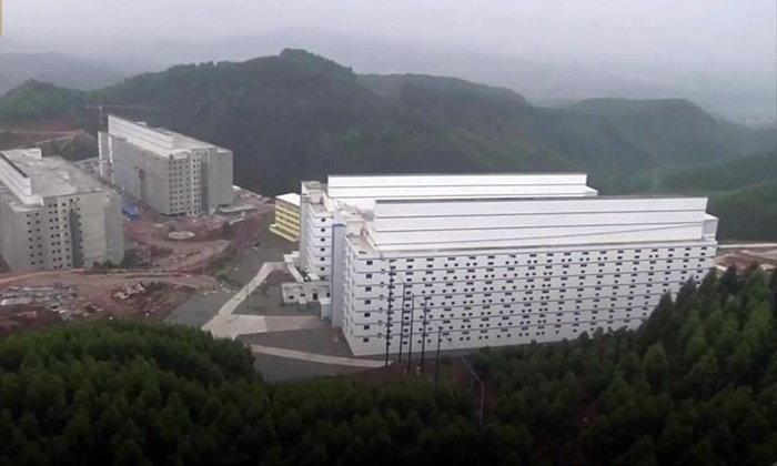 """แปลกแต่จริง จีนสร้าง """"โรงแรมหมู"""" เลี้ยงได้ชั้นละ 1,000 ตัว"""