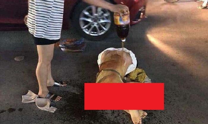 สะใจอีช้อย! เมียหลวงเวียดนามจิกหัวตบเมียน้อย แถมฉีกเสื้อผ้า ก่อนราดน้ำปลา-โรยพริกป่นบนแผล