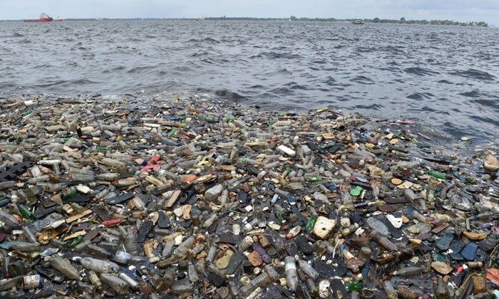 """ทำไมปลาถึงกินพลาสติก? นักวิจัยค้นพบว่าเพราะกลิ่น """"น่าจะอร่อย"""""""