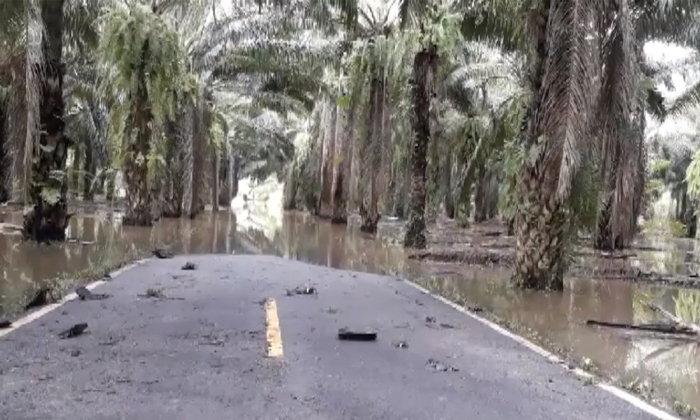 ตกทุกวี่ทุกวัน-น้ำท่วมถนนเชื่อม 2 หมู่บ้านตัดขาด 20 ครอบครัวสัญจรต้องใช้เรือ