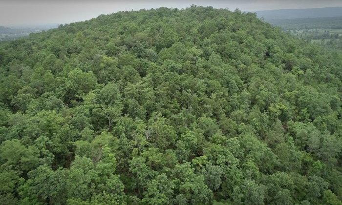 ระดมทีมค้นหาจิตอาสาเก็บเห็ด หลงป่าภูพานไป 4 วัน ญาติเชื่อผีบังตาไว้