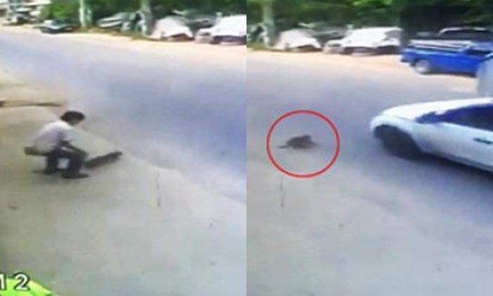 """เพื่อนยืนยัน """"ชายปล่อยแมวให้รถทับตาย"""" ไม่ได้ตั้งใจ อ้าง """"ทำหลุดมือ"""""""