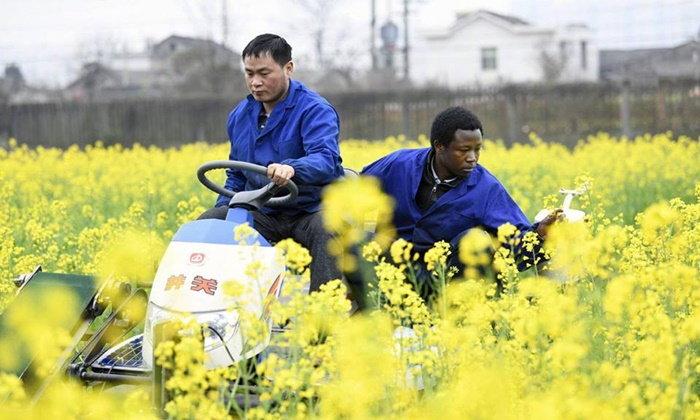 """เก่งมาก หนุ่มนักศึกษาชาวแอฟริกัน ผู้มาเรียนต่อ """"เทคโนโลยีการเกษตร"""" ที่จีน"""