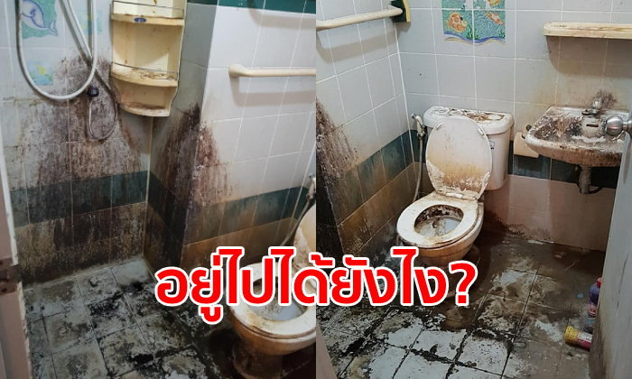เจ้าของห้องช็อก คนเช่าห้อง 9 ปี ปล่อยส้วมสุดโสโครก เหมือนไม่เคยล้างเลย