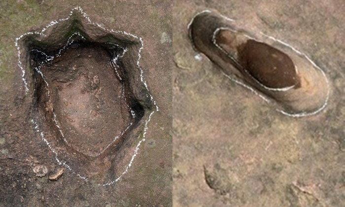 ตะลึง พบรอยเท้าไดโนเสาร์อายุ 100 ล้านปี ทางตะวันออกของจีน