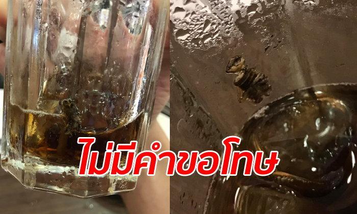 อ้วกแทบพุ่ง หนุ่มกินปิ้งย่างร้านดัง เจอซากแมลงสาบเละๆ ในแก้วน้ำที่กินหมดแล้ว