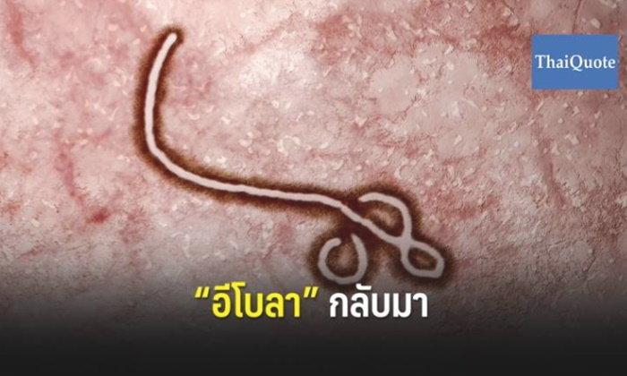 """WHO ประกาศภาวะฉุกเฉินโลก หลัง """"เชื้ออีโบลา"""" ระบาดรุนแรง"""