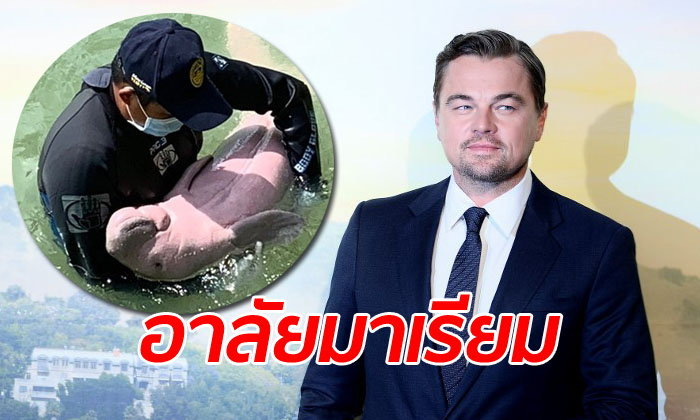 """ลีโอนาร์โด ดิคาปรีโอ โพสต์ข่าว """"มาเรียม"""" พะยูนน้อยขวัญใจคนไทยตายเพราะพลาสติก"""