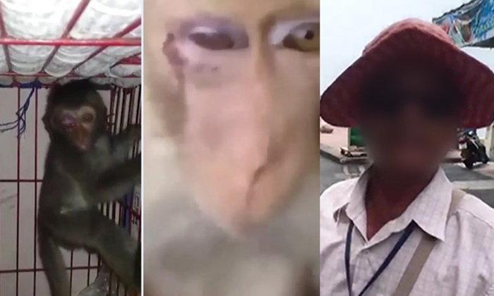 ลุงปัดใช้หนังสติ๊กยิงลิงตาบอด อ้างแค่ขู่ ฉะมือถ่ายคลิปกลัวขายอาหารลิงไม่ได้