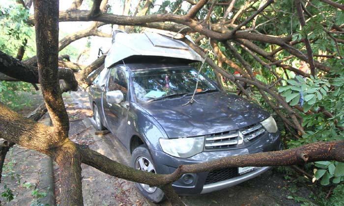 พายุพัดถล่มซัดหลังคาบ้านพังกว่า 20 หลัง-ต้นไม้หักโค่นทับรถยนต์เสียหายอีก