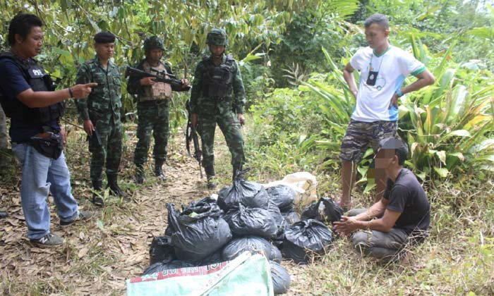 """ตชด.445 รวบวัยรุ่นขน """"ใบกระท่อม"""" ในป่าใกล้ถนนเลียบชายแดนไทย-มาเลเซีย"""