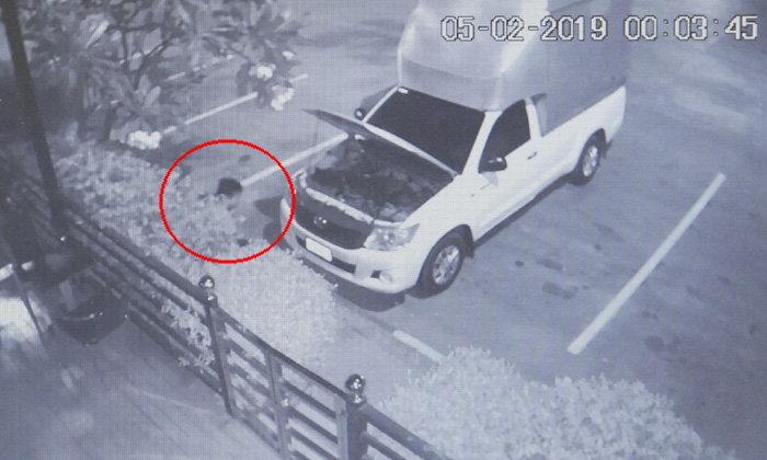 โจ๋สุดแสบ-ทำเนียนเปิดฝากระโปรงซ่อมรถ ก่อนถอดปั๊มน้ำร้านกาแฟดังซิ่งรถหนี